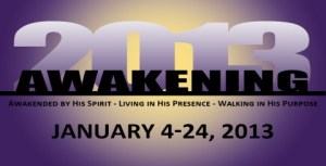 Awakening 2013 (480 x 246)
